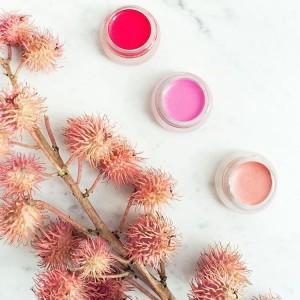 RMS Beauty lip stick organic beauty