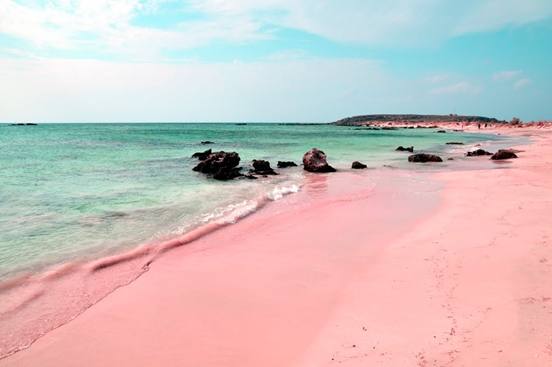 Pink Sand Beach in Bermuda (Cacique Tribe)