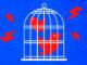 Bird Cage twitter