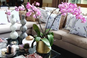How to Set Up Your Living Room Like the Spoiled Mummy